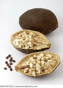 Le fruit de baobab bio Baomix certifié par Ecocert