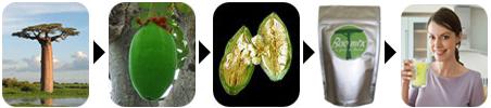 Baomix organic Baobab fruit pulp
